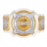 WWE Women's Tag Team Replica Championship Title