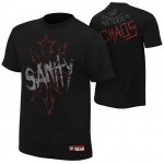 "SAnitY ""All That Matters is Chaos"" Authentic T-Shirt"