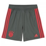 FC Bayern Training Short - Dark Green - Kids