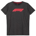 Formula 1 Essentials Logo T-Shirt - Grey - Kids