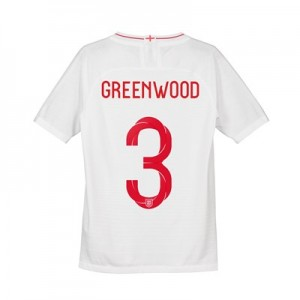 England Home Vapor Match Shirt 2018 - Kids with Greenwood 3 printing