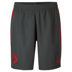 FC Bayern Training Woven Short - Dark Green
